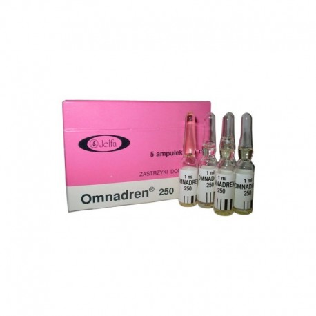Omnadren 250, 1 ml Amp (250 mg / amp)